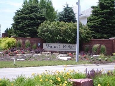 Walnut Ridge Image