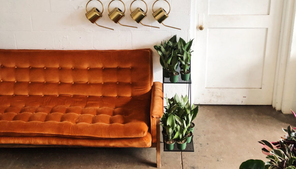 a living room with a large, reddish, velvet couch and many houseplants