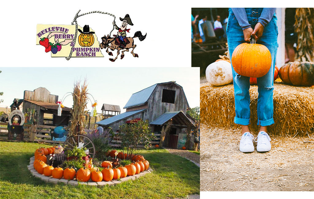 Bellevue Berry Farm logo and image of the farm