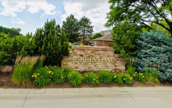 Torrey Pines Image
